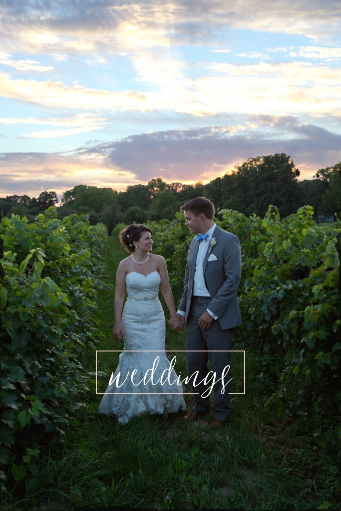 Loudoun county VA vineyard wedding photograph