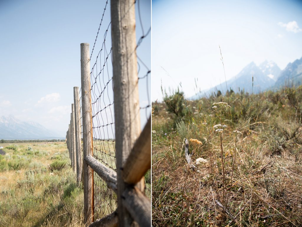 fence line with mountains in background