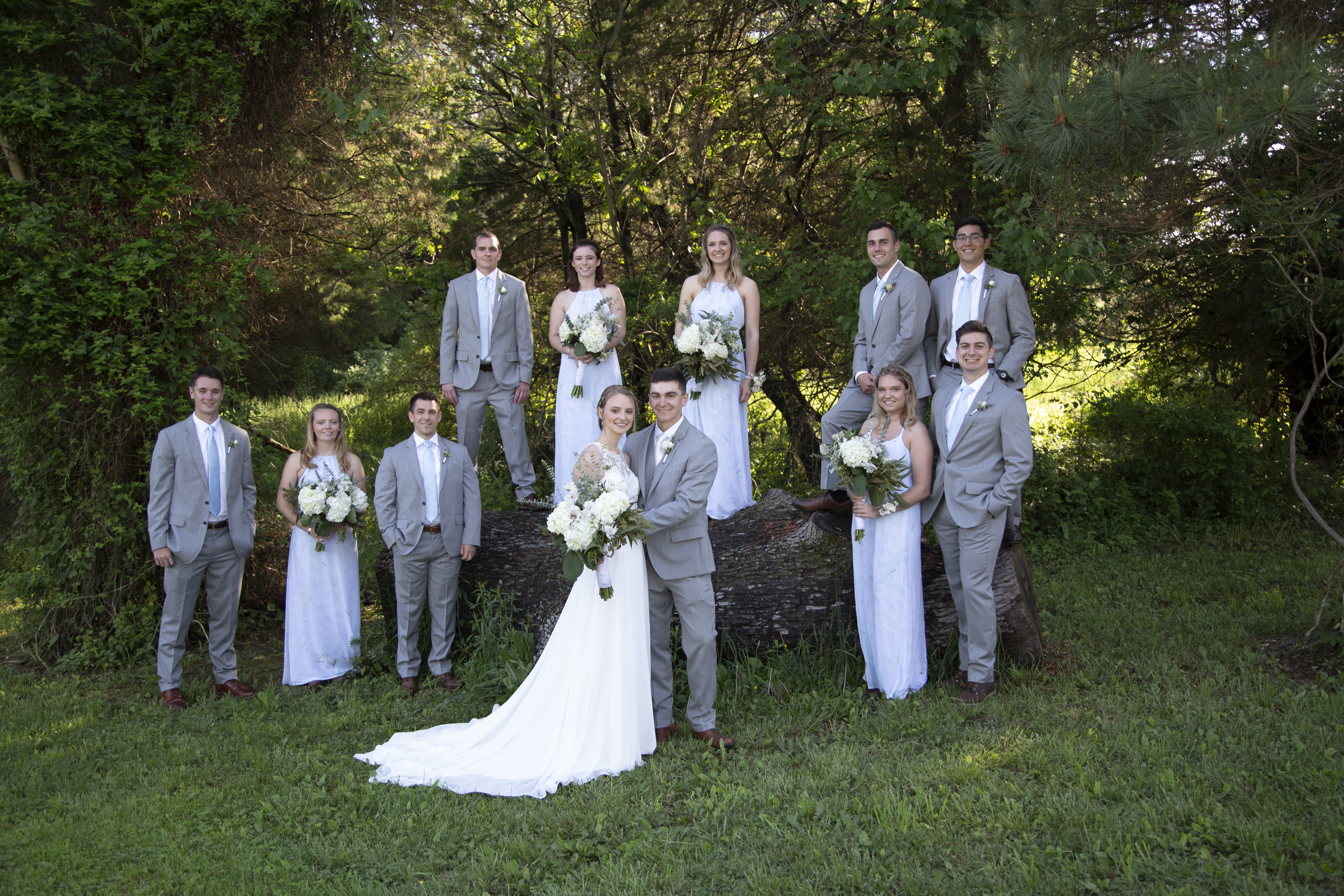 wedding party standing on and around a log