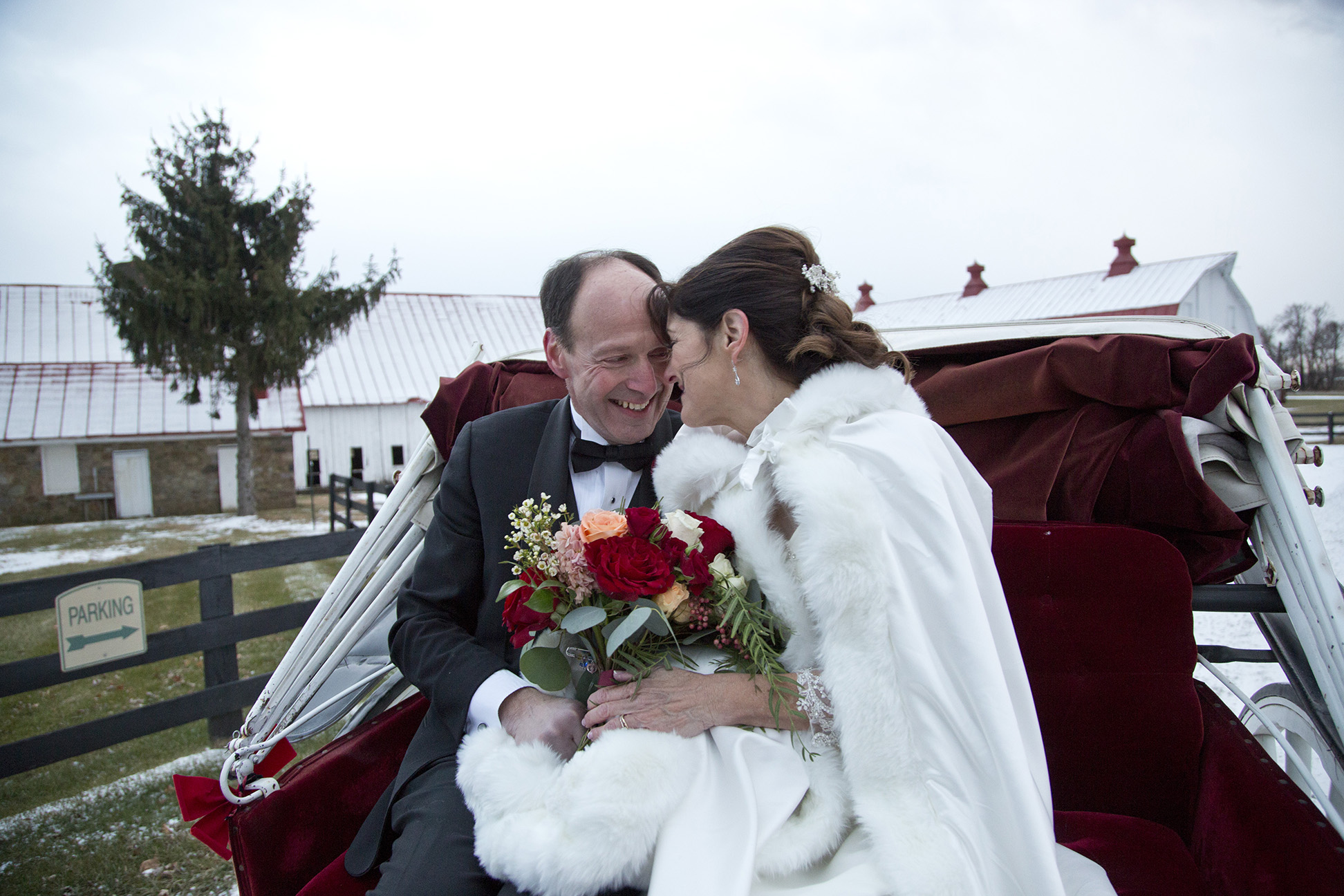 bride and groom snuggling on carriage with barns in the background