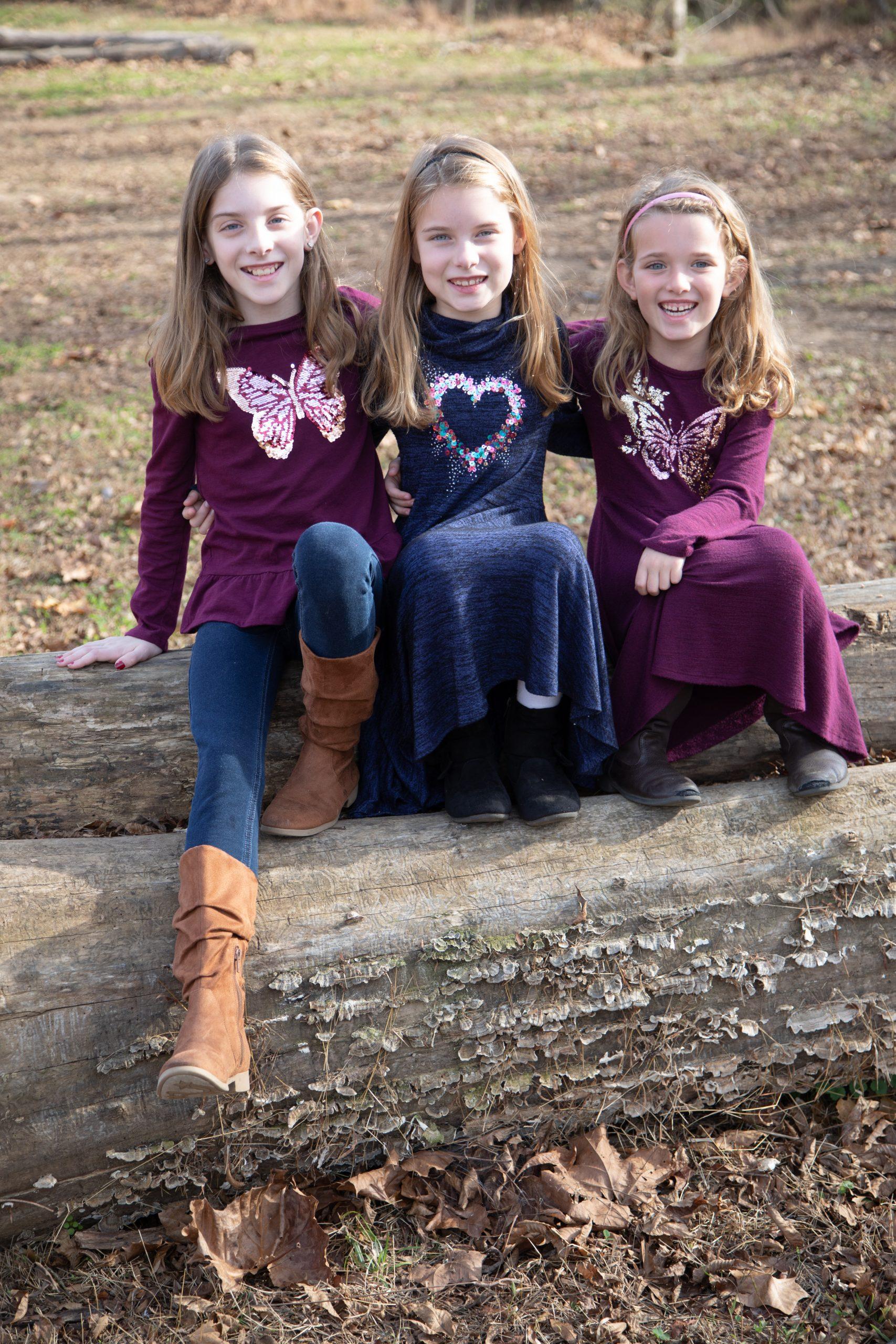 sisters on a log. Loudoun County lifestyle photographer
